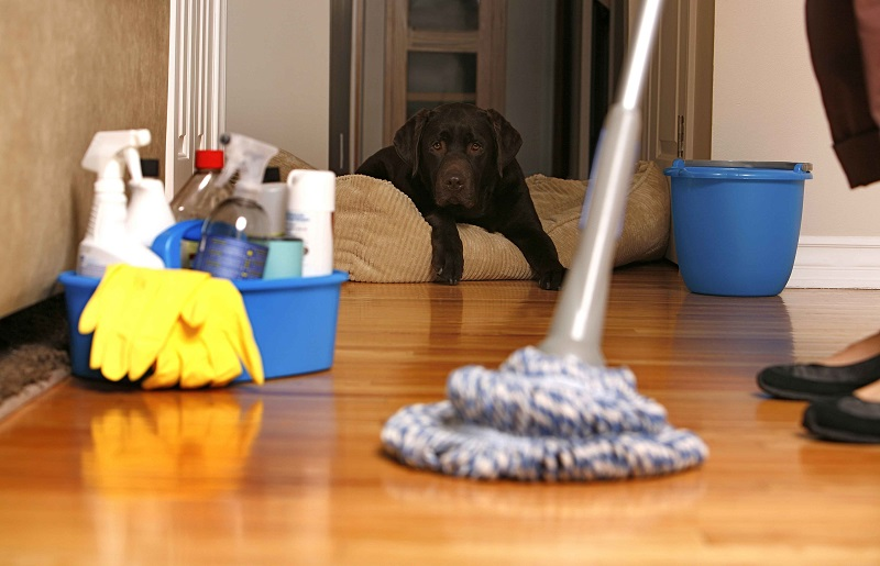 Cleaning-floor